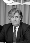 karadzic, 1993, Pressekonferenz, New York, UN Photo Milton Grant