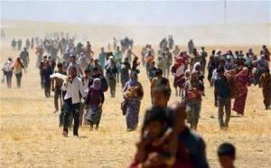 Der Flüchtlingsstrom aus dem Senjar-Gebirge
