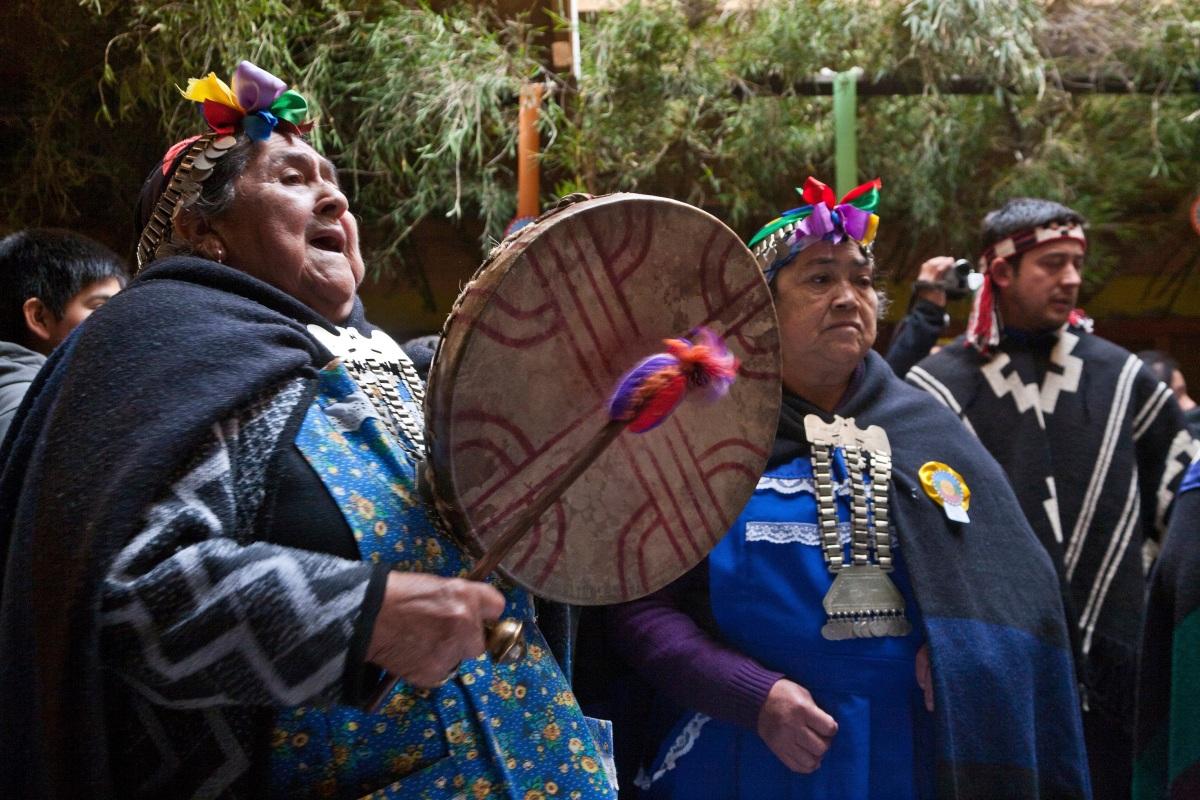 Mapuche: Die Leidtragenden erneuerbarer Energien inChile